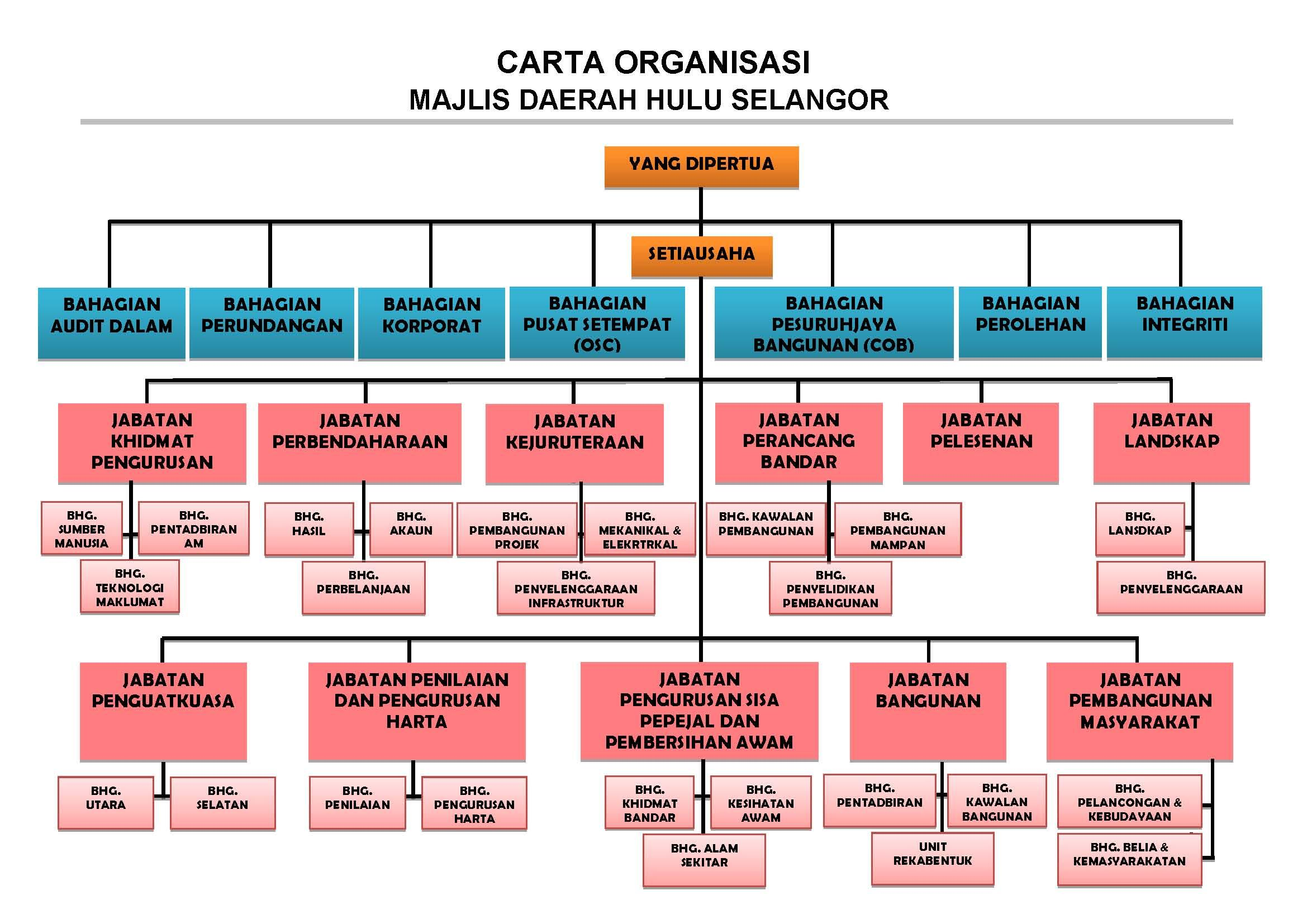 carta organisasi MDHS